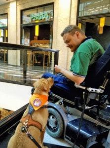 Ausbildung zum Behindertenbegleithunde-Team 1