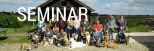Wochenendseminar Therapiehunde Teams Mechernich 2019-02-IRI 6