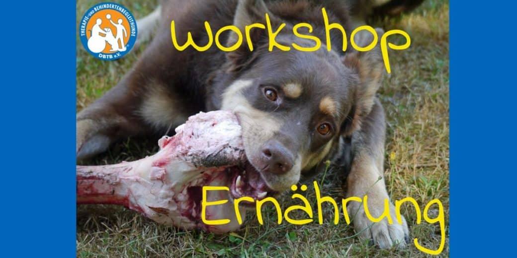 Workshop Ernährung 3